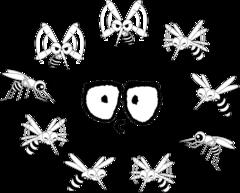 飛蚊症.png